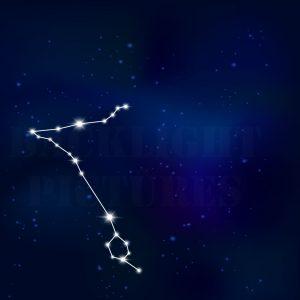 Sternenbild Fische