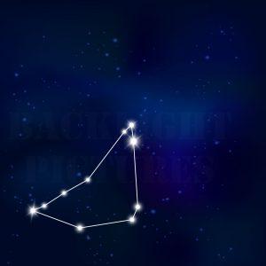 Sternenbild Steinbock