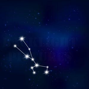 Sternenbild Stier