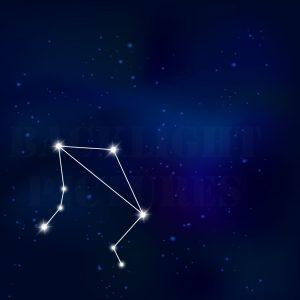 Sternenbild Wagge